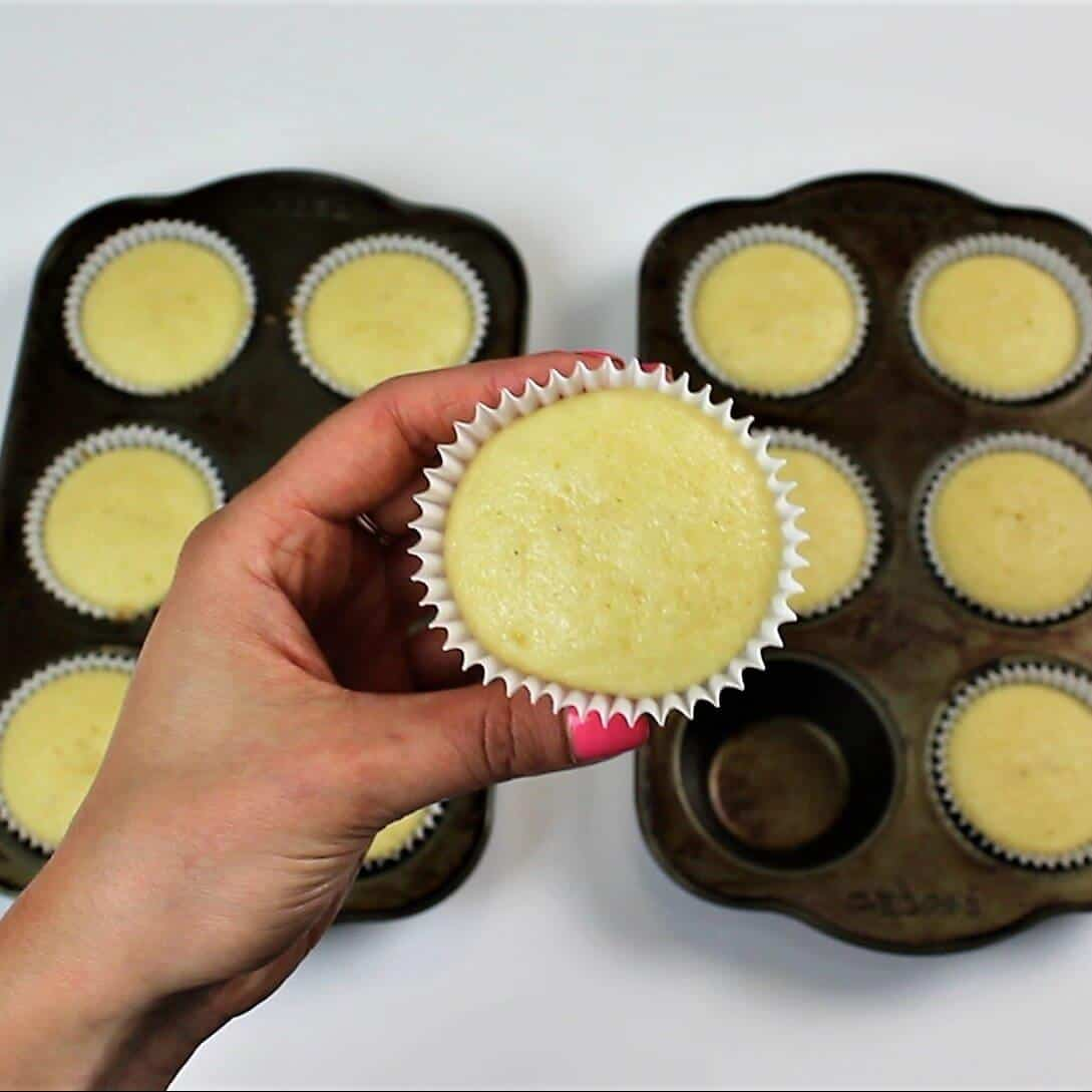 The most delicious vanilla cupcake recipe! They are so fluffy and moist!!