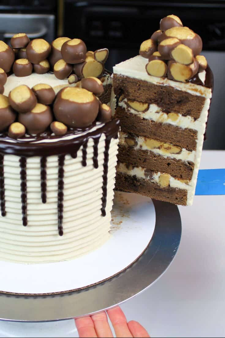 Cutting into this buckeye chocolate layer cake, frosted with my peanut butter buttercream