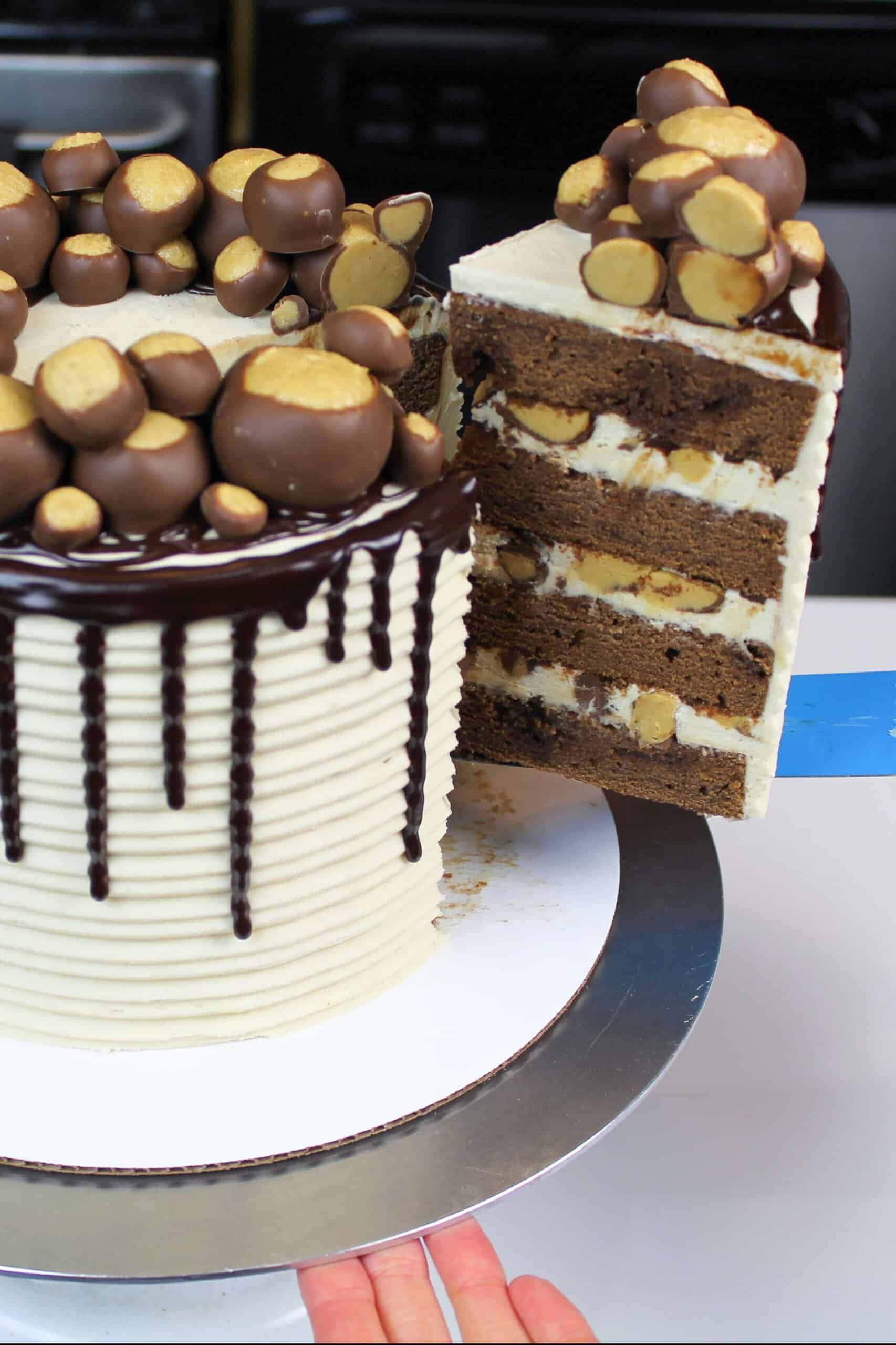 image of buckeye cake being cut into to show it's peanut butter frosting and tender chocolate cake layers