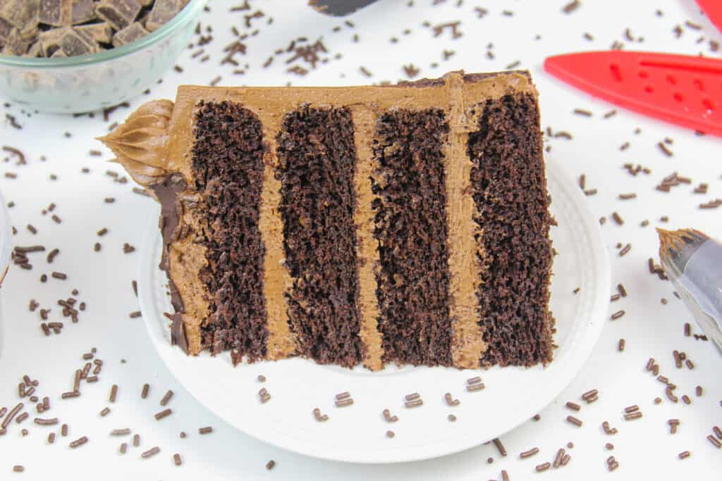 image of a slice of gluten free chocolate cake with chocolate sprinkles all around it