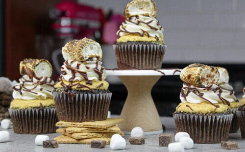 image of smores cupcakes topped with a toasted marshmallow