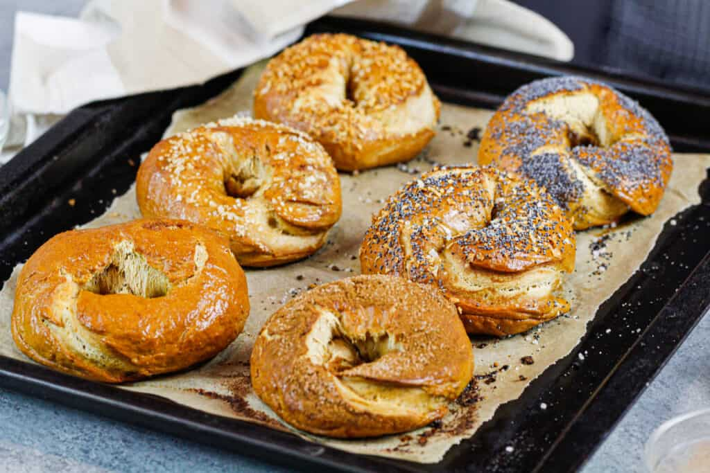 image of homemade bagels made with different toppings