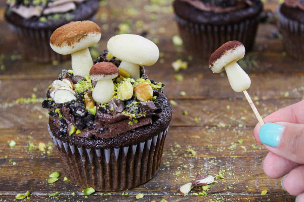 image of forest themed cupcake make with marzipan mushrooms