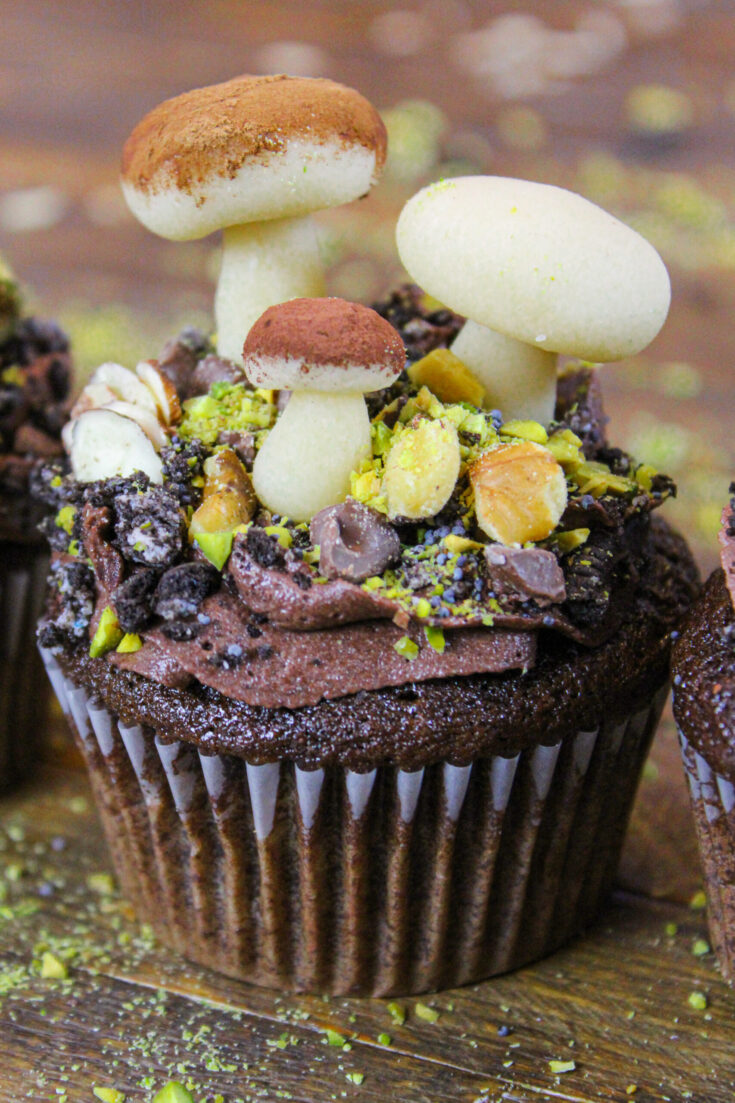 image of mushroom cupcake decorated with marzipan mushrooms for a forest wilderness party