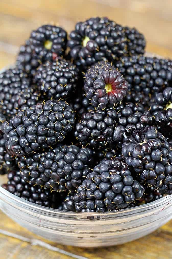 image of freshly picked blackberries