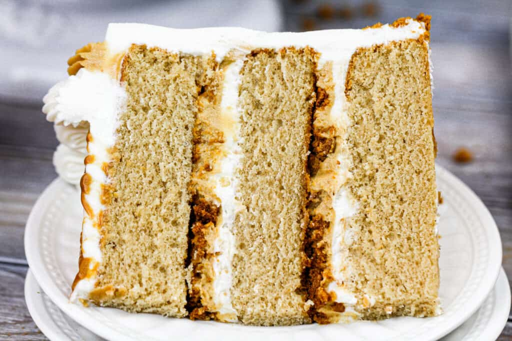 image of a slice of cookie butter cake