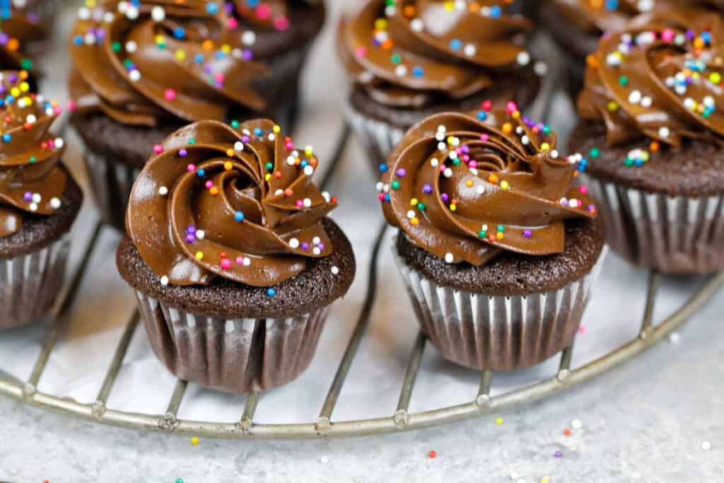 image of mini chocolate cupcakes that have been decorated with dark chocolate frosting and rainbow sprinkles