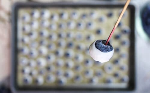 image of a frozen yogurt blueberry held on a toothpick