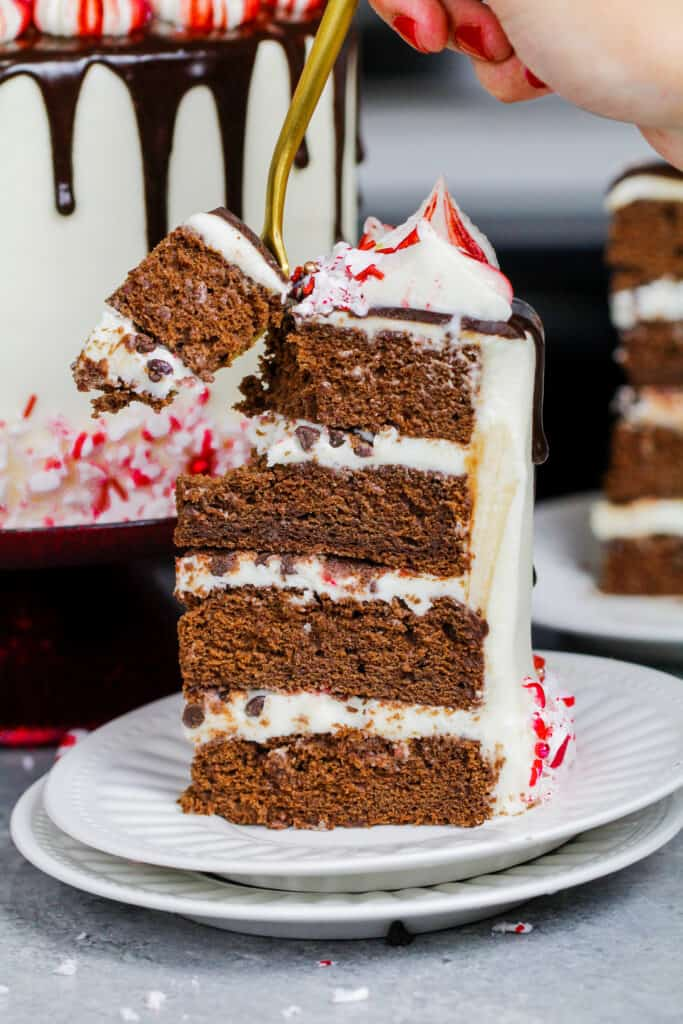 image of a slice of peppermint mocha cake being cut into with a fork