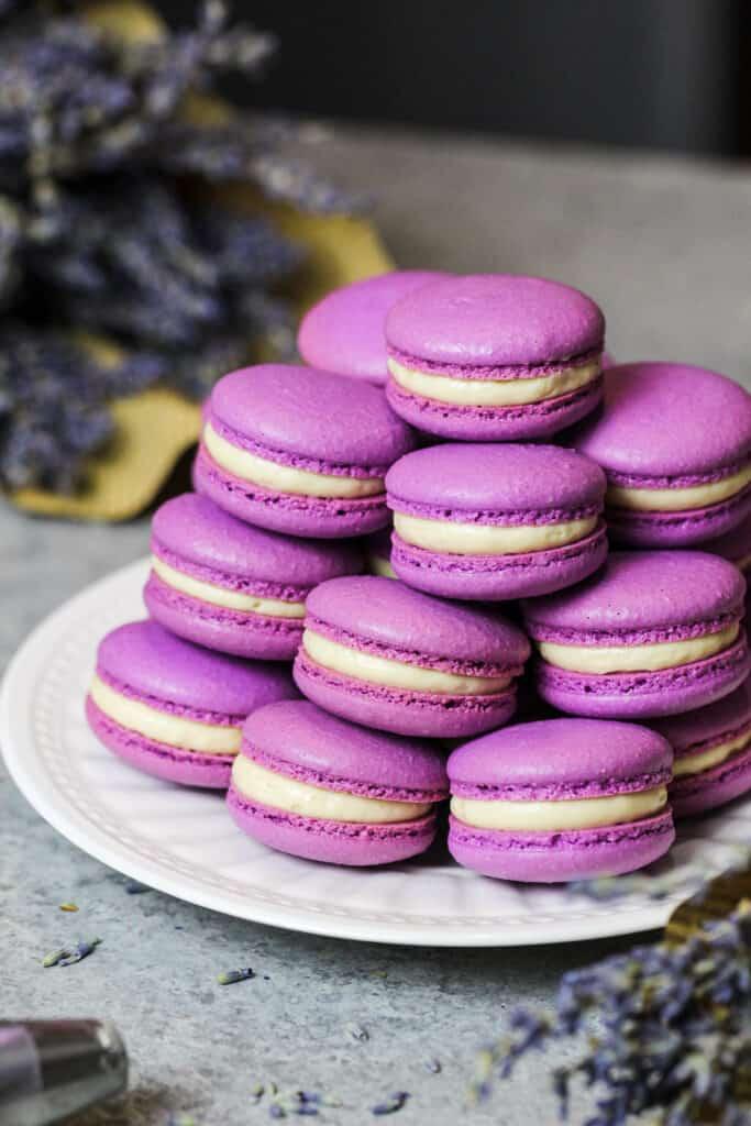 image of honey lavender macarons