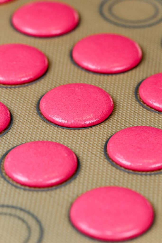 image of pink macaron shells that have rested and formed a skin and are now ready to be baked