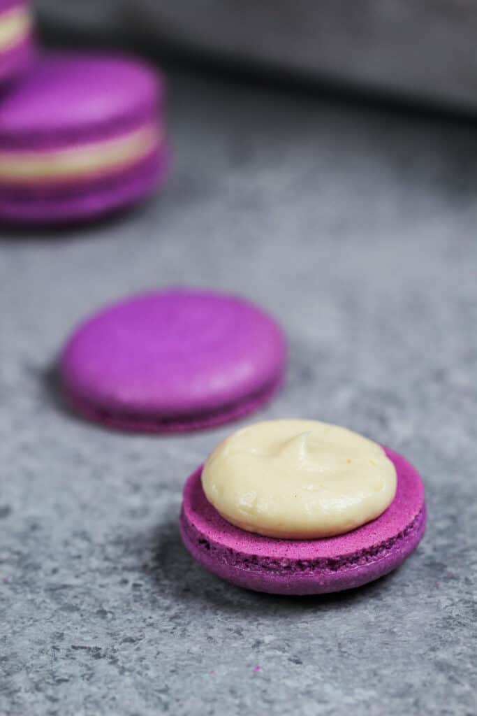 image of a purple macaron shell filled with a honey lavender buttercream to make honey lavender macarons