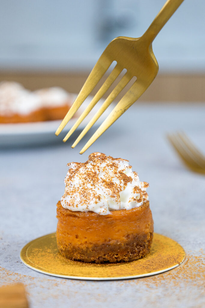 image of a mini pumpkin cheesecake topped with whipped cream and a dusting of cinnamon